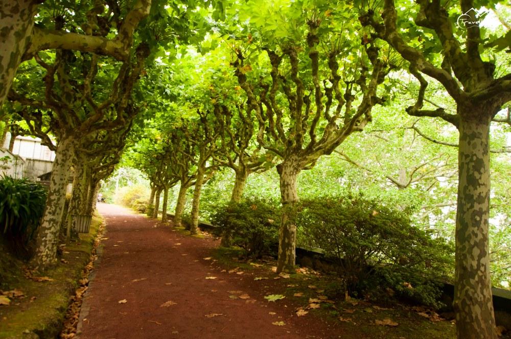 Azores_Anna_Kedzierska_Travellissima-0338