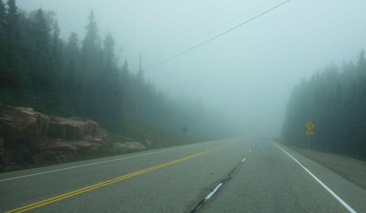 DSC06259 Thick Fog