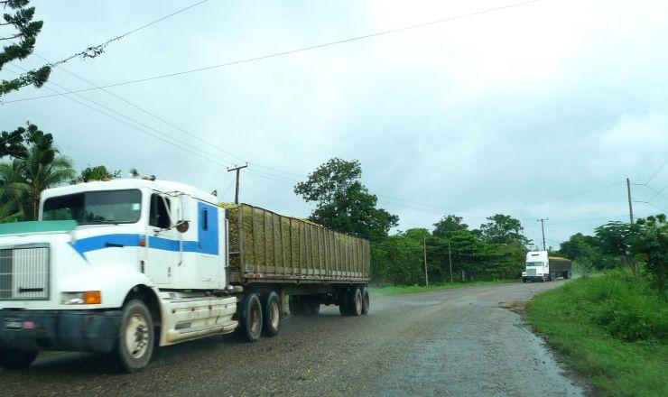 P1070965 Orange Trucks~