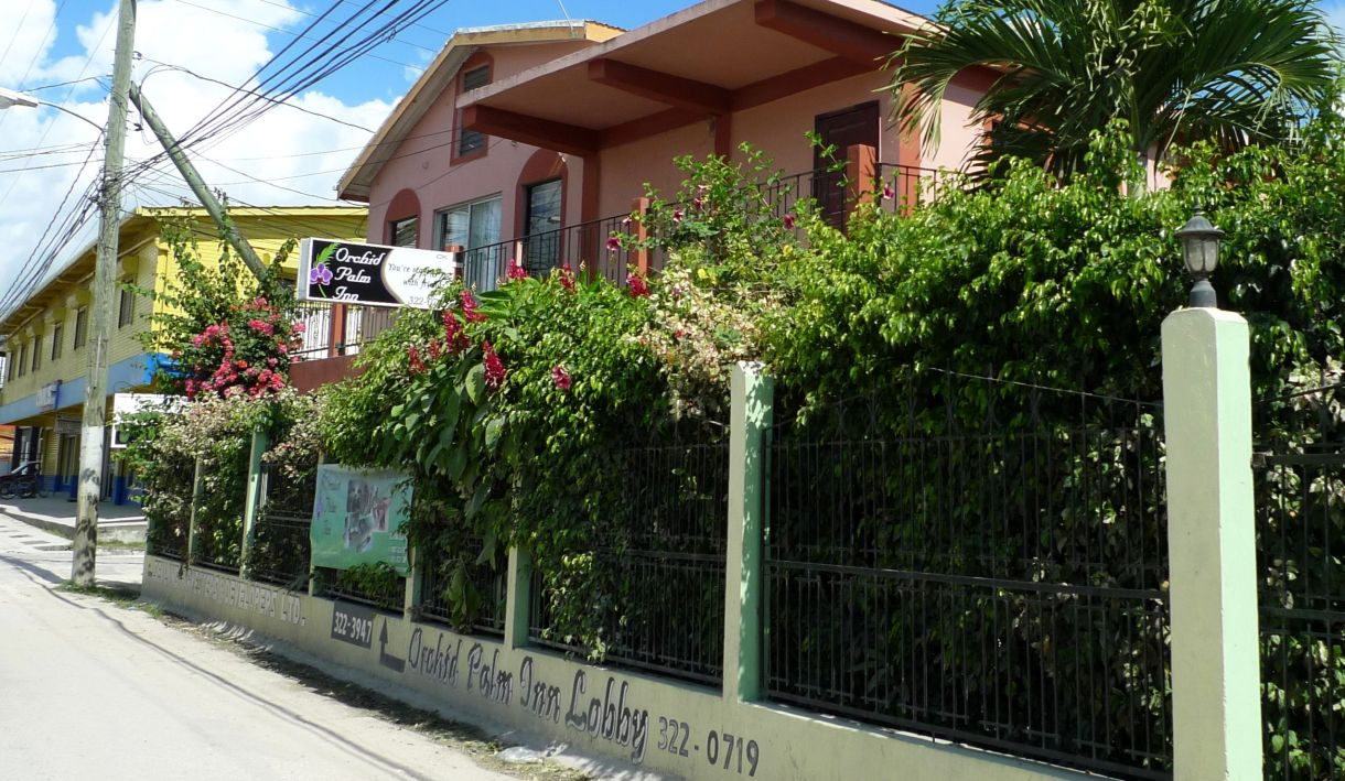 P1070423 Orchid Palm Inn~