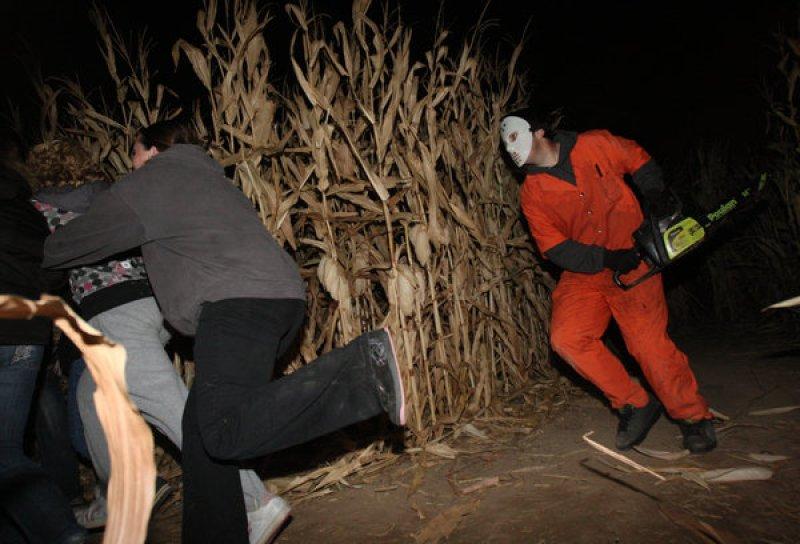 Corn Maze Runners