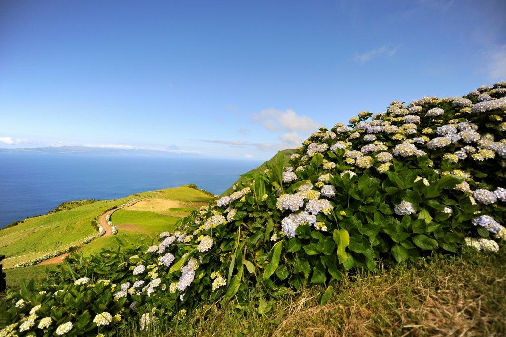 Hyd Hill An Sea