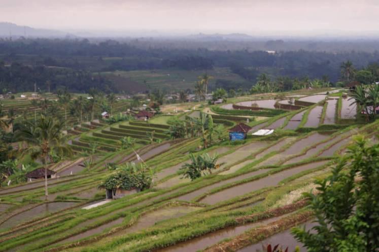 Tips Indonesië