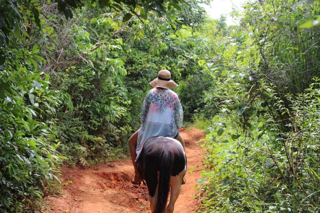 Vinales horse riding tour 3