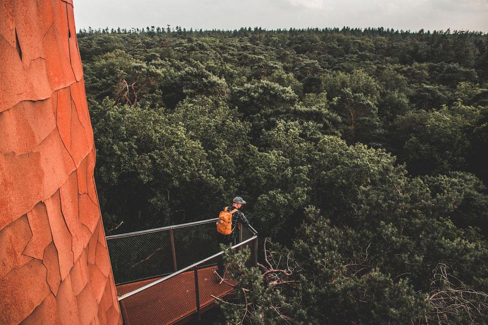 Bosbergtoren Appelscha Nationaal Park Drents Friese Wold
