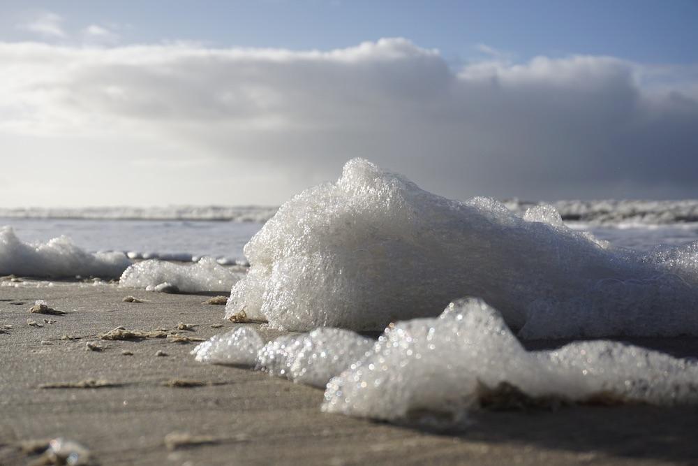 Strandwandeling Zandvoort Nederland
