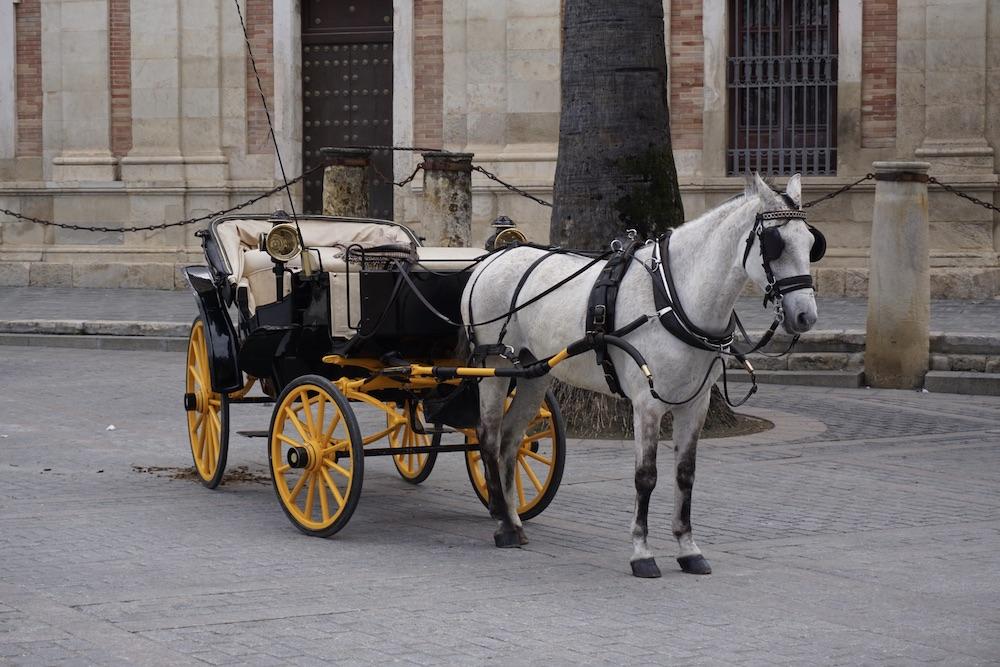 Rondrit paardenkoets Sevilla