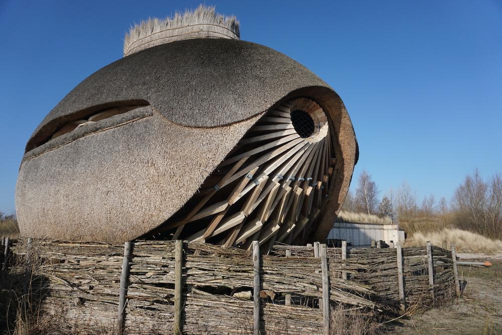 Vogelobservatorium Tij Haringvliet