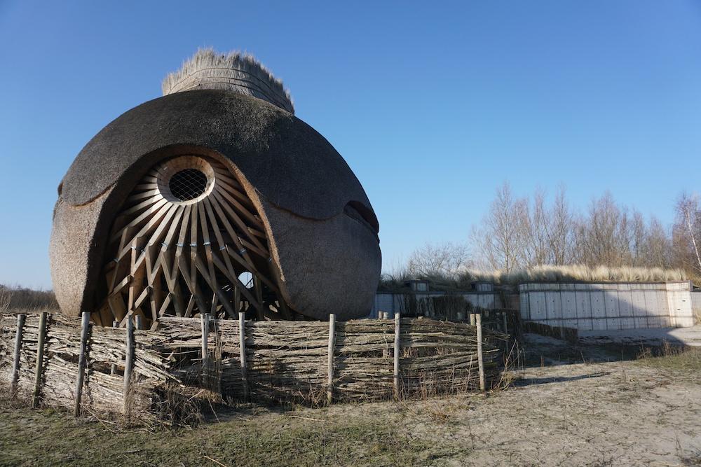 Vogelobservatorium Tij Stellendam Goeree Overflakkee