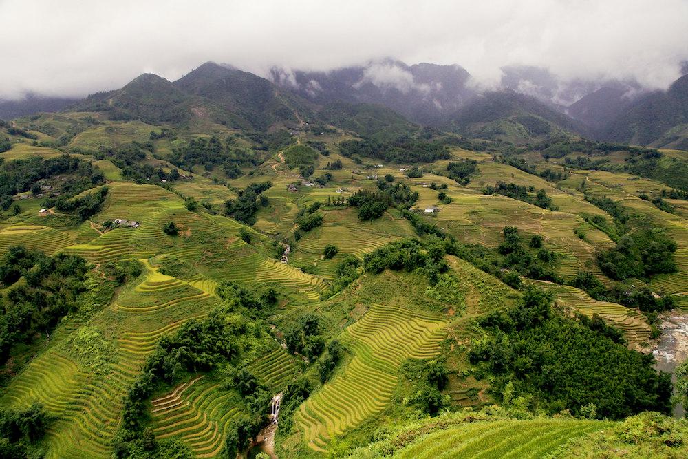 Terrasvormige rijstvelden Sapa Vietnam