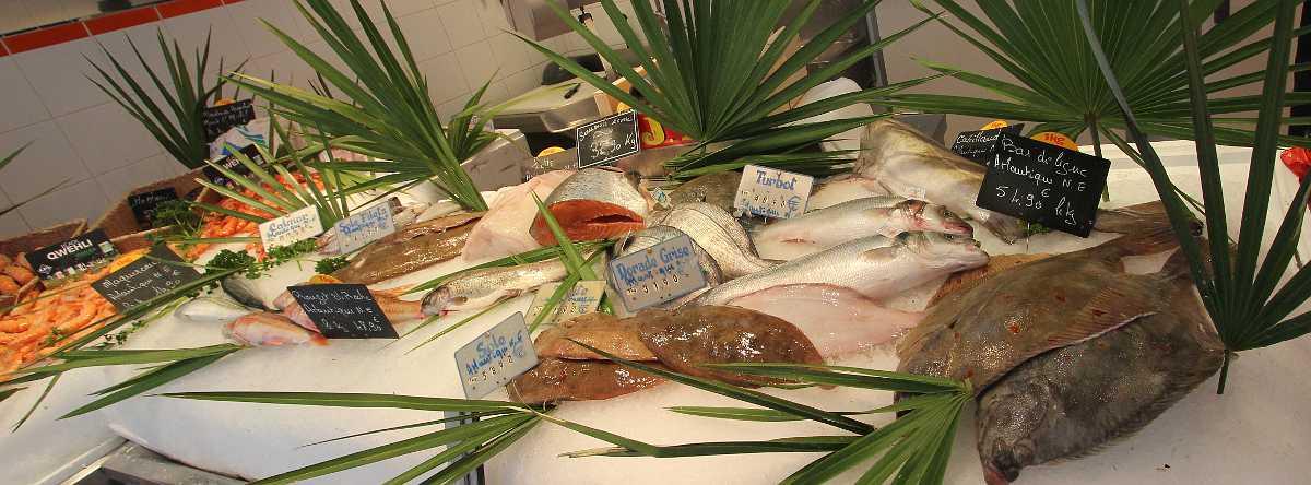 Paris Fish Market