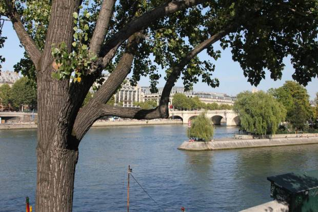 View of Île de la Cité and Pont Neuf from the West, Downstream, Paris