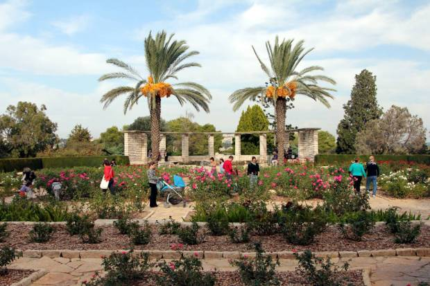 Baron Edmond de Rothschild Park, Zichron Yaakov, Israel