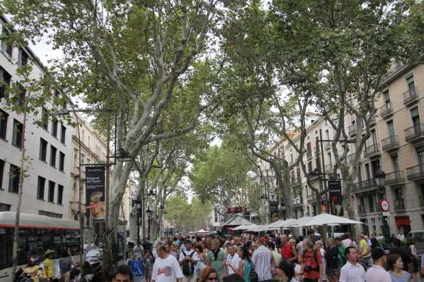 barcelona1051