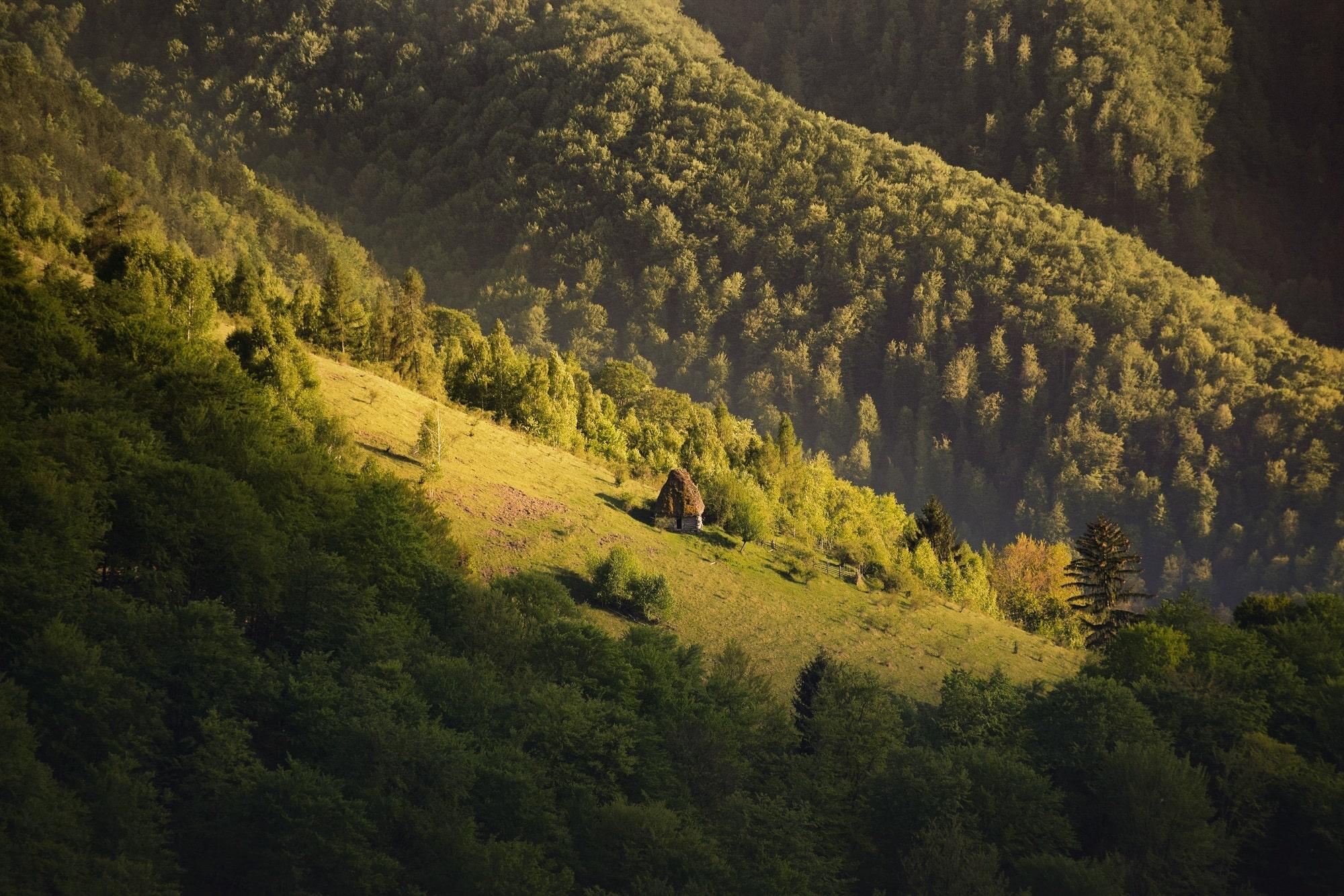 Countryside Romania