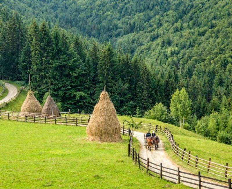Rural-life-in-Romania