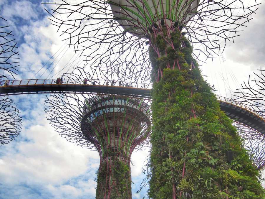 Best places to visit in Singapore with kids Gardens by the Bay OCBC Skywalk