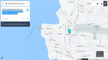 tiburones ballena Puerto Princesa