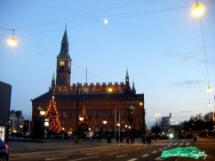 Rhaduspladsen Copenhague