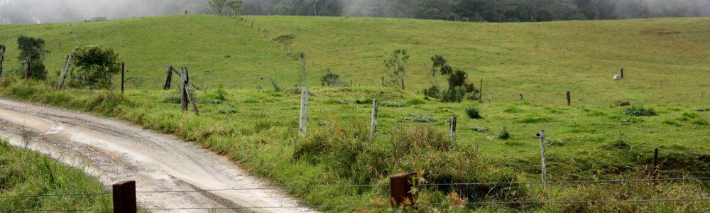 Broken River bush camp – Eungella National Park