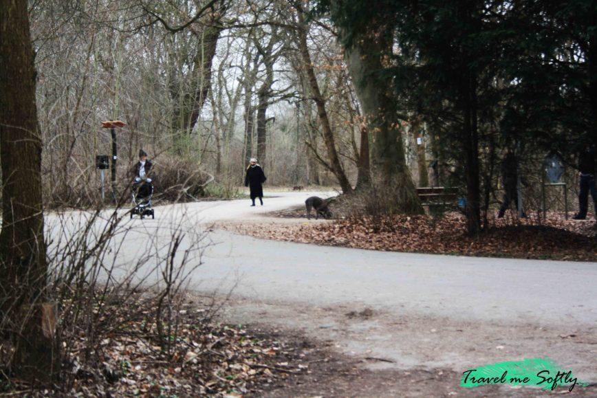 qué hacer en Mannheim Waldpark