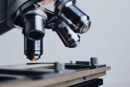microscopio divulgación científica