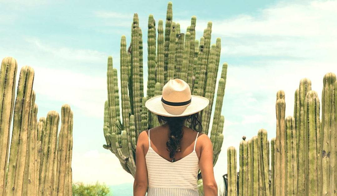 Mexico Solo Travel: How To Be Safe & Crush It