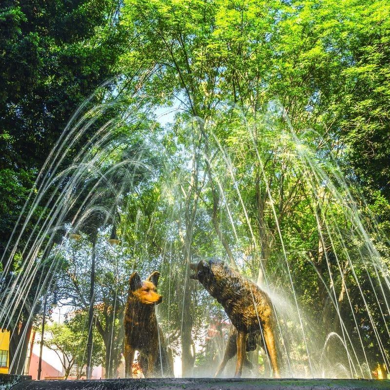 Fuente de los Coyotes (Coyote Fountain)