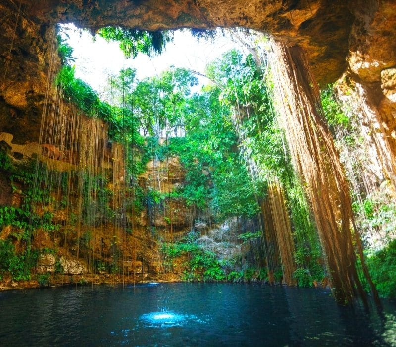 underwater sinkhole called a cenote to swim in with blue water and vines going into the water