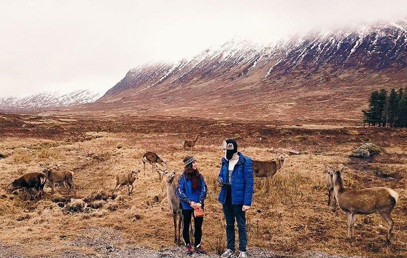Scozia-Glencoe-Cervi