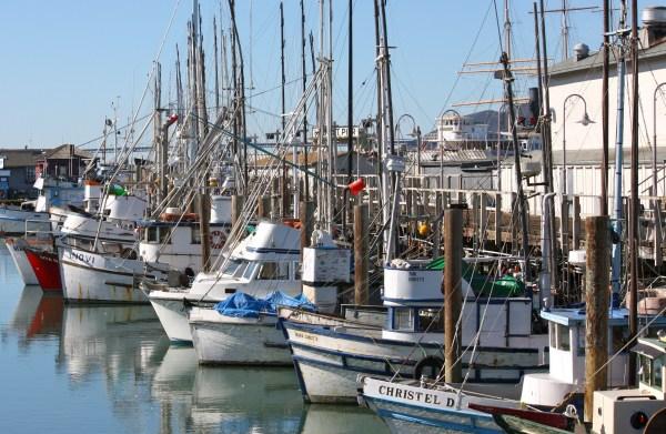 Fisherman Wharf San Francisco Travel Monkey