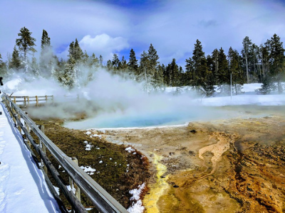 Yellowstone Winter Snowshoe Vacation