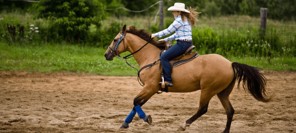 Cowgirl on a Dude Ranch