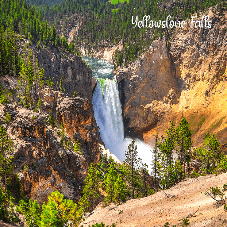 Yellowstone Falls in Yellowstone National Park on a sunny day.