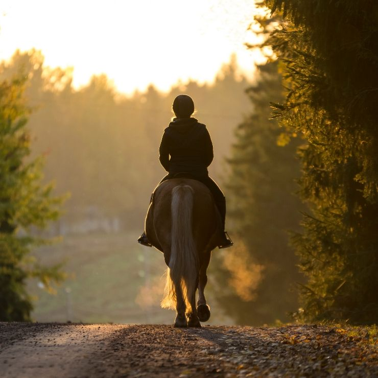 Horseback riding is a quintessential Montana thing to do while in the beautiful state.