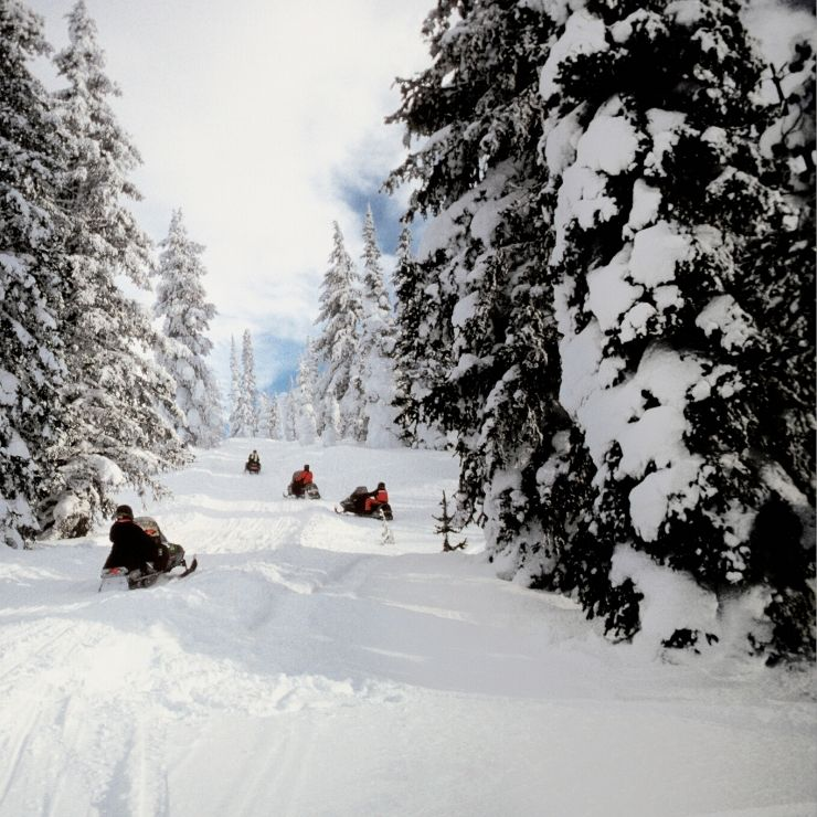 Snowmobiling in Yellowstone National Park through fresh snow.