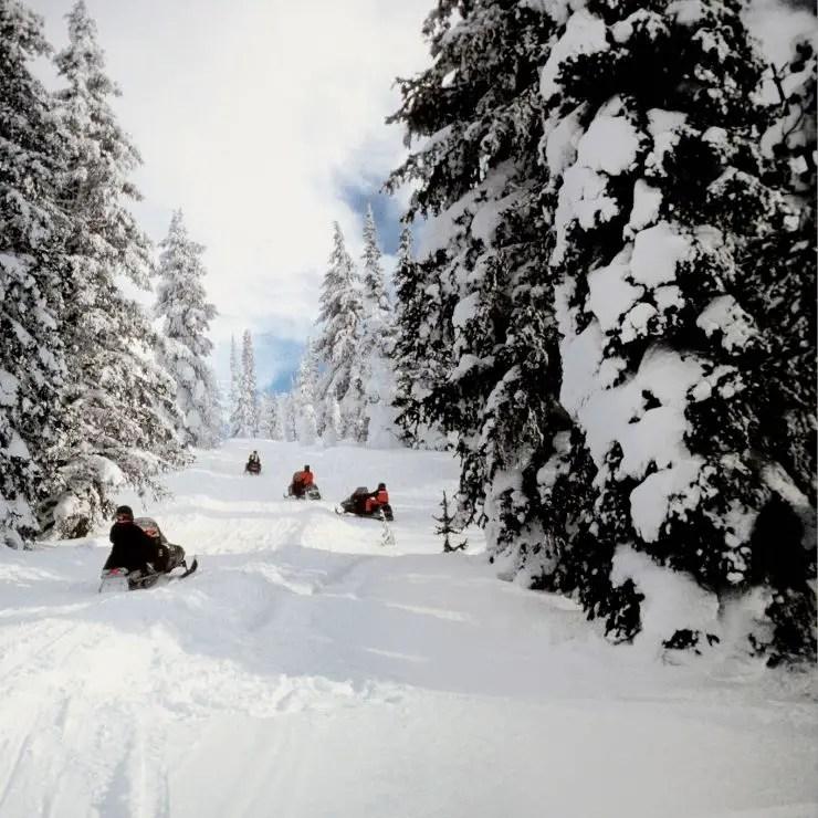 Snowmobiling in Yellowstone National Park through fresh snow.