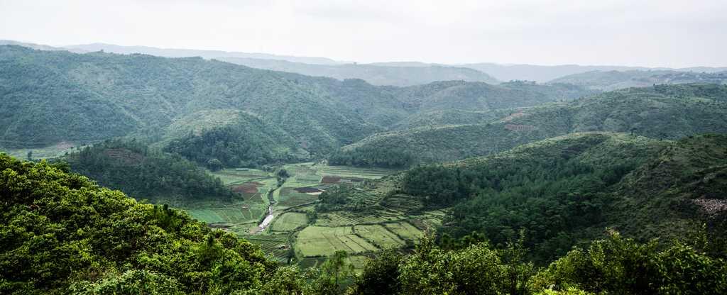 Mawphlang Sacred Forest