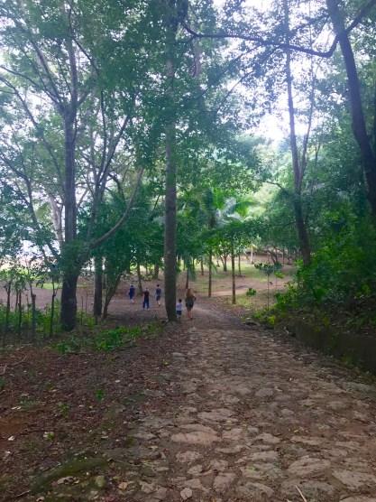 path-to-beach