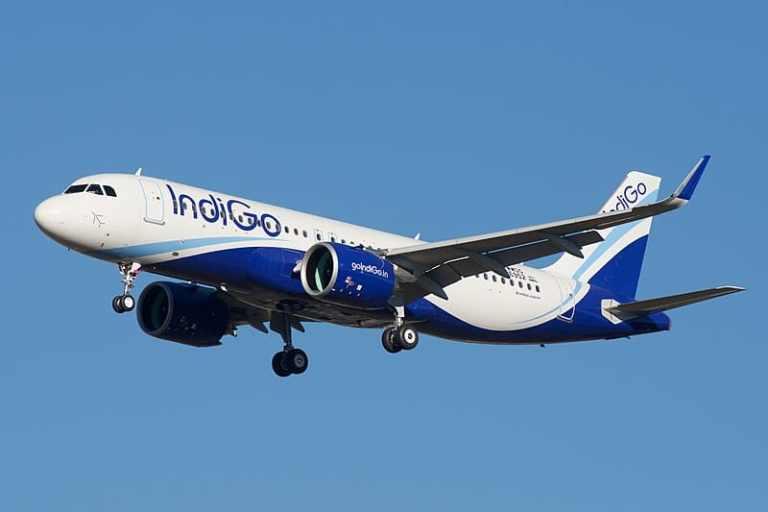 Indigo Flight India and Europe