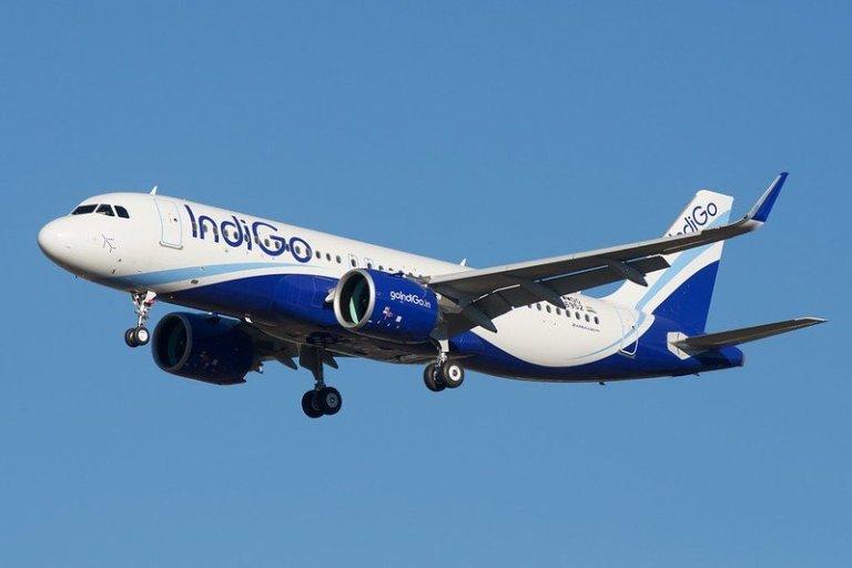 Indigo International Sale - Source Flickr