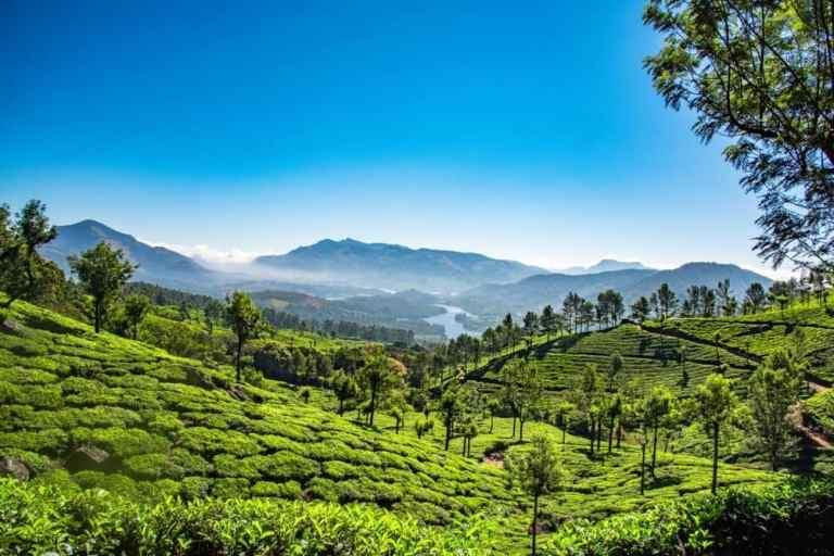 Tourist Spots Kerala Opens