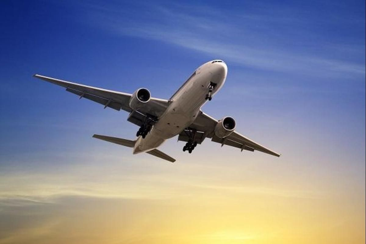 Domestic Flight Govt Cuts Seat Capacity