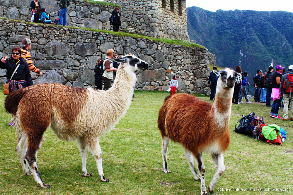 Cusco & Machu Picchu, Peru