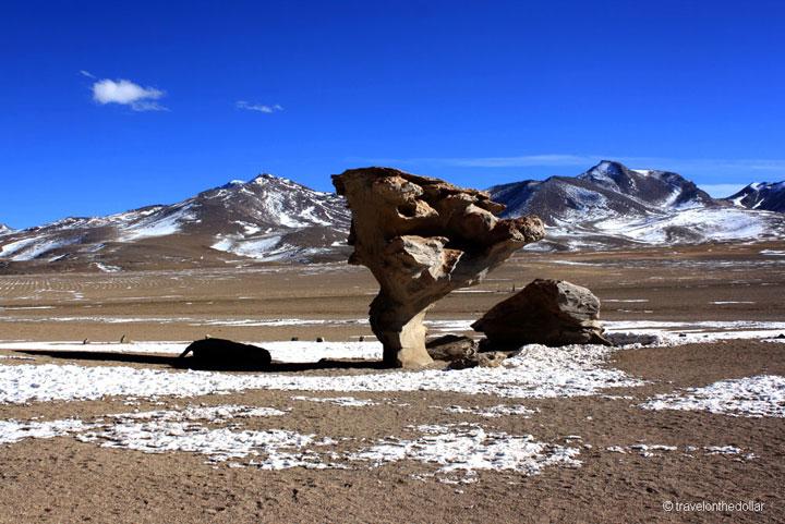 Africa Rock or Rock Tree