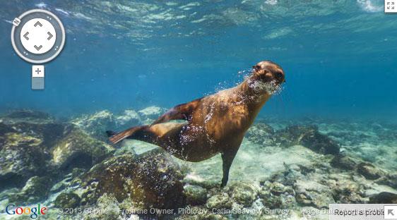 Galapagos2