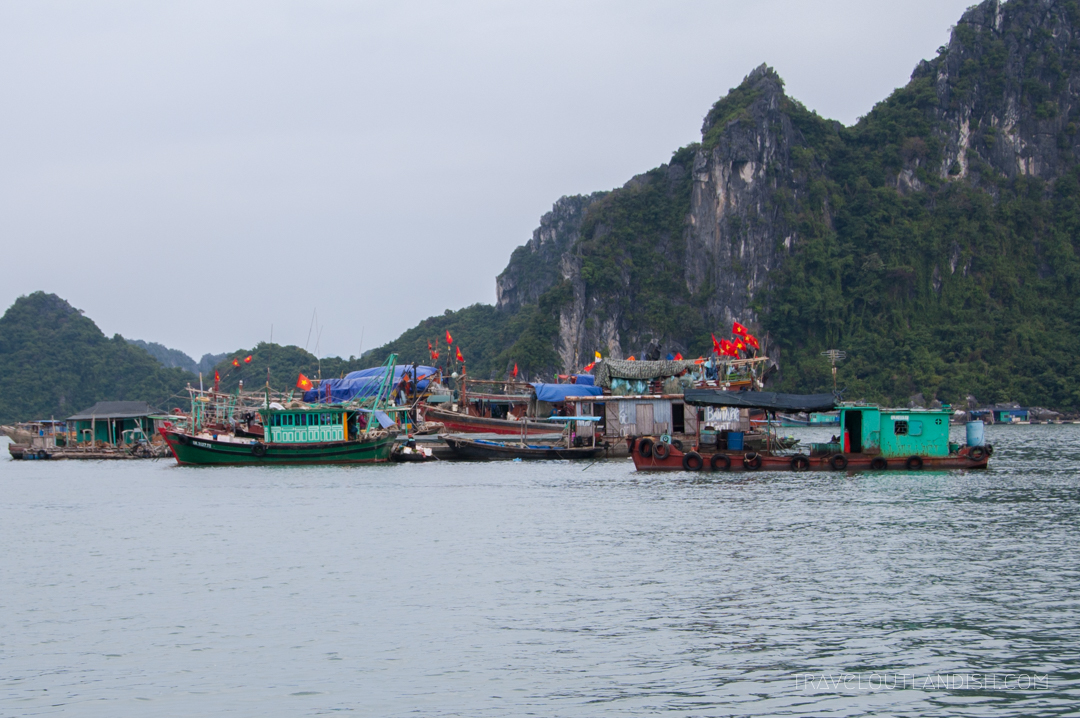 Bai Tu Long Bay Cruise - Fishing boats at the Bai Tu Long Bay Harbor