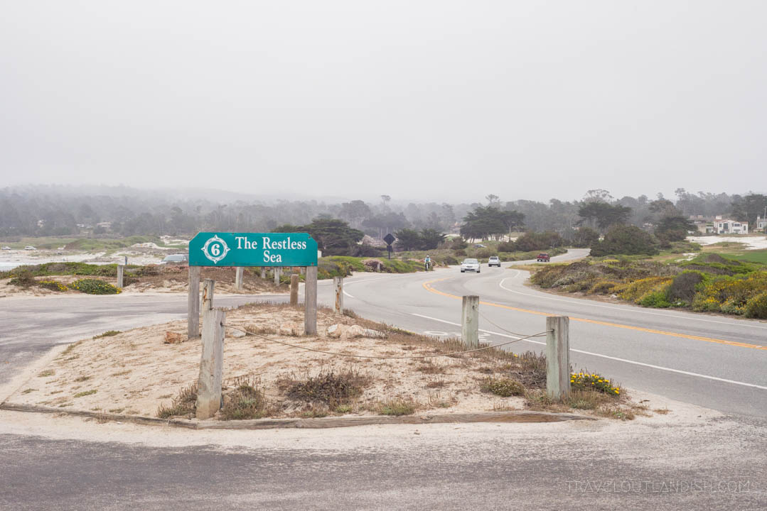 Things to do in Monterey - 17-Mile-Drive