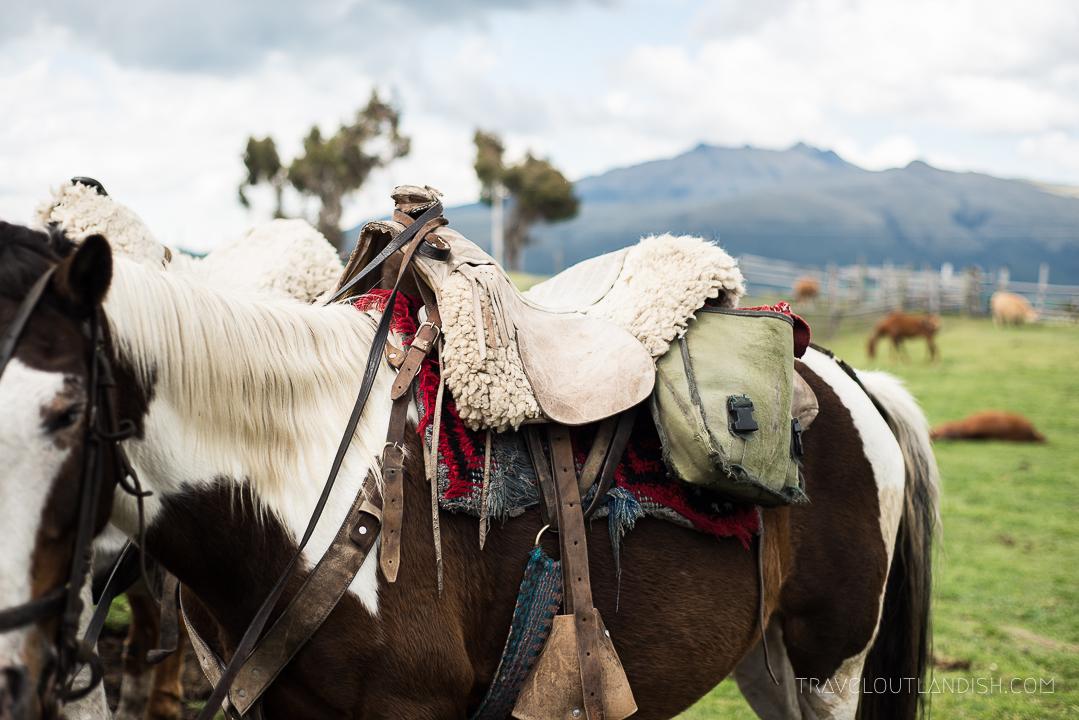 Riding horses at Cotopaxi