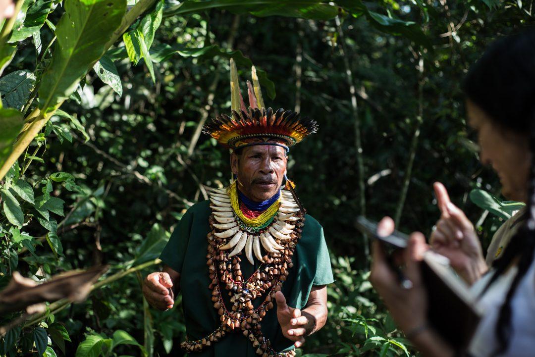 Ecuador Amazon - Shaman Visit with Samona Lodge